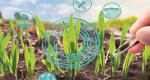 Agriculture fertilisants